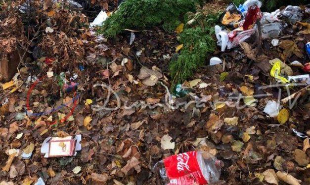 Curățenie în Cartier – cea mai activă comunitate din Dumbrăvița chemată la ordine