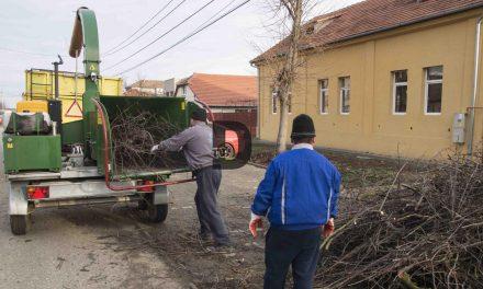 A început curățenia de primăvară pe străzile Dumbrăviței!