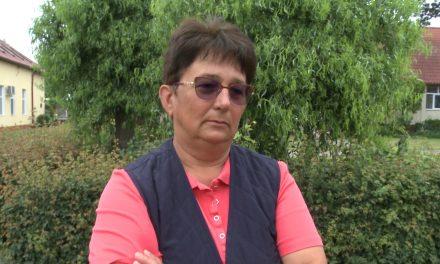 VIDEO: Secția de tenis de masă de la CSC Dumbrăvița își poate relua activitatea – DECLARAȚIE Nicoleta Husar