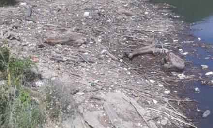 Administrația Bazinală de Apă Banat: Amendă pentru neigienizarea cursurilor de apă