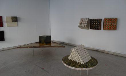"""Expoziția """"Biografic"""" a artistului vizual Matei Gașpar se poate vizita până pe 17 iulie la Galeria Helios"""