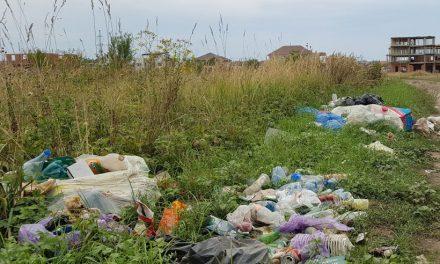NEWS ALERT: Se amână evenimentul EcoHora din Dumbrăvița