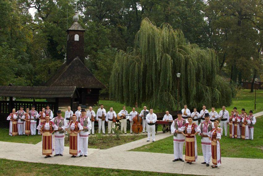 EcoHora în Dumbrăvița – Artiștii bănățeni vă invită la o acțiune pro-mediu