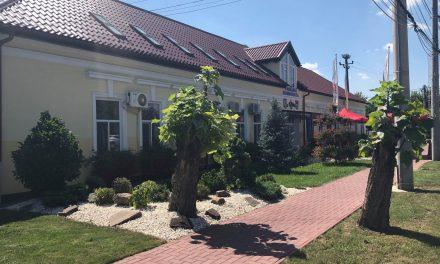 Au fost afișate listele cu candidații pentru Primăria și Consiliul Local Dumbrăvița