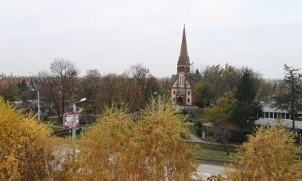 COVID-19: în ultimele 24 de ore, 283 persoane au fost carantinate, iar 299 au intrat în izolare în județul Timiș