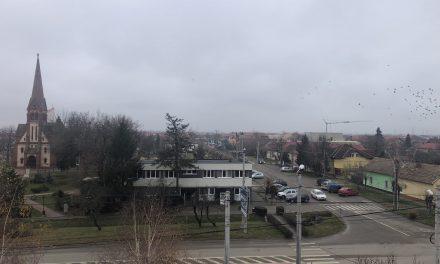 COVID-19 în Timiș: Peste 300 de cazuri confirmate în ultimele 24 de ore