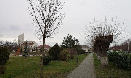 COVID-19 în Dumbrăvița: Peste 20 de îmbolnăviri în ultimele 24 de ore