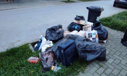 GALERIE FOTO: Ce amendă riscă dumbrăvițeanul care a aruncat gunoiul pe stradă