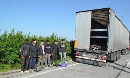 Călăuză afgană şi 18 migranţi, depistaţi la Timisoara