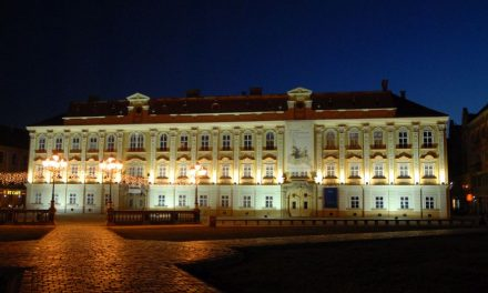 """Muzeul Național de Artă din Timișoara își va deschide porțile în """"Noaptea muzeelor"""""""