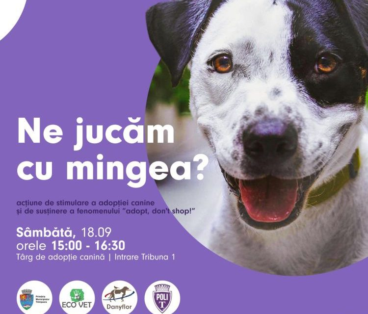 Fotbaliștii de la SSU Politehnica Timișoara susțin adopția câinilor fără stăpân