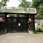 Evenimentele culturale ale săptămânii în organizarea instituțiilor Consiliului Județean Timiș