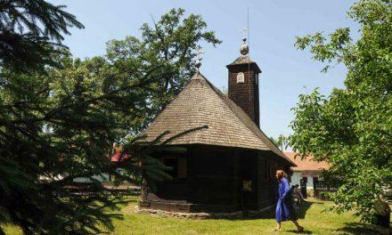Evenimentele culturale ale săptămânii în organizarea instituțiilor CJ Timiș – Programul Complet
